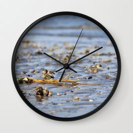 Shells in the sand 3 Wall Clock