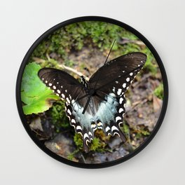 Wonderous Swallowtail Wall Clock