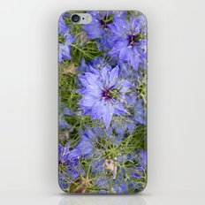 Love in the Mist iPhone & iPod Skin