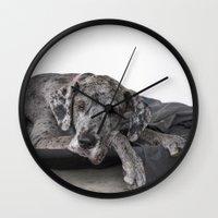 great dane Wall Clocks featuring Great Dane waiting by Deborah Janke
