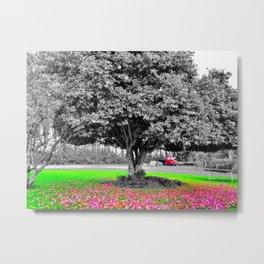 Tree, Matangi New Zealand Metal Print