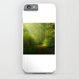 Autumn Forest Nature Landscape iPhone Case