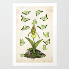 Ephemeros Art Print