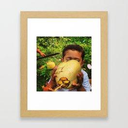 Coconut in Honduras Framed Art Print