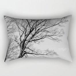 Naked beauty c Rectangular Pillow