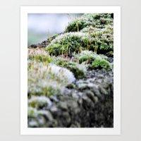 moss Art Prints featuring Moss by Danny Arthurs