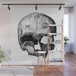 Skull 8 Wall Mural