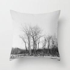 The Un-Winter Throw Pillow