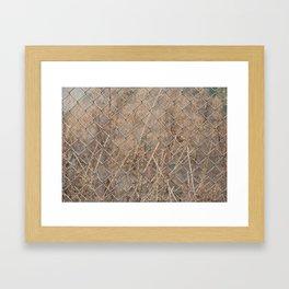Walking around Framed Art Print
