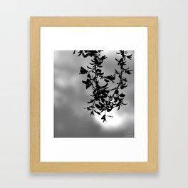 Sfumature di grigio Framed Art Print