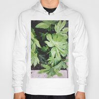 fern Hoodies featuring Fern by ThingsLikeStuff