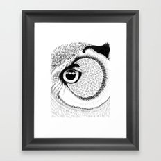 Owl Eye Framed Art Print