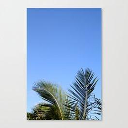 Palm Tree Sky Canvas Print