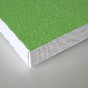 Physics Canvas Print