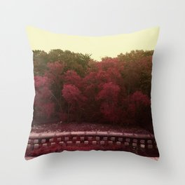 Maybe One Day, But Not This Day Throw Pillow