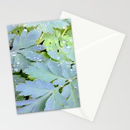 Dew Drops on Leaves Stationery Cards