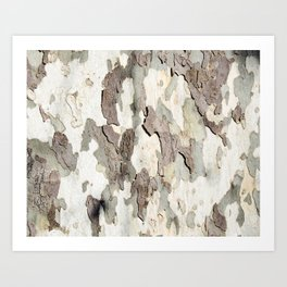 Bark Map Art Print