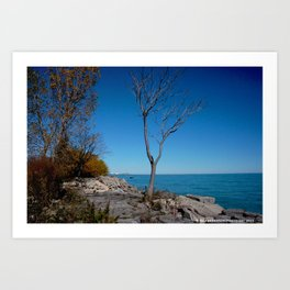 So Near, But Yet So Far #1 (Chicago Northerly Island Collection) Art Print