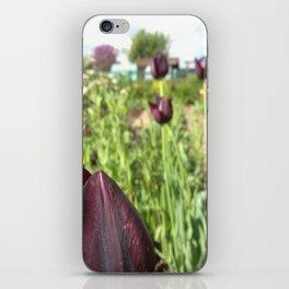 black Tulip iPhone Skin