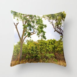Eucalyptus trees in the bush Throw Pillow