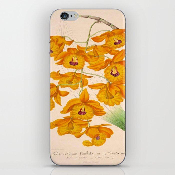Dendrobium fimbriatum Vintage Botanical Floral Flower Plant Scientific Illustration iPhone Skin