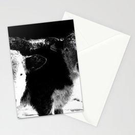 Palmer and Sara Stationery Cards