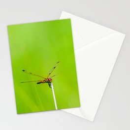 Calico Pennant Dragonfly Stationery Cards