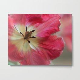 Neon Pink Tulip Flower Passion Metal Print