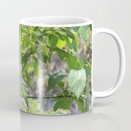 Leaves and Branches at Black Bayou, Monroe, Louisiana Coffee Mug