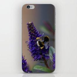 Bee Lavender - Bumble Bee in Garden iPhone Skin