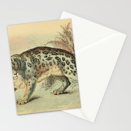 Richard Lydekker - A Handbook to the Carnivora (1896) - Ounce / Snow Leopard Stationery Cards