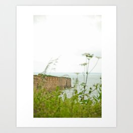 Another Point of View Art Print