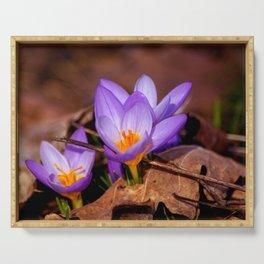 Concept nature : Et purpura claritate Serving Tray