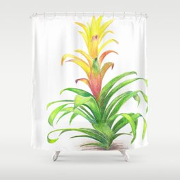 Bromeliad - Tropical plant Shower Curtain