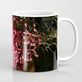 Medinilla Magnifica Coffee Mug