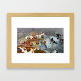 Rusty Bolts Framed Art Print