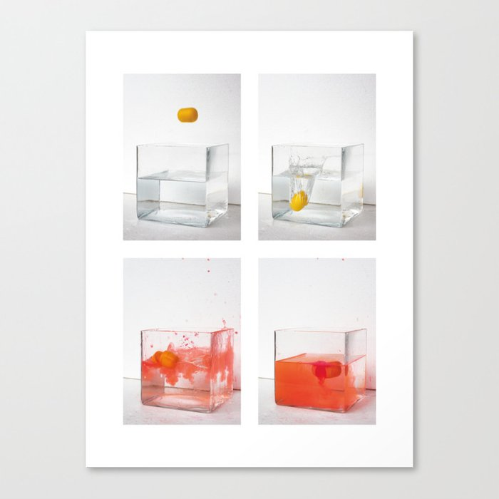 Capturing a motion sequence Canvas Print