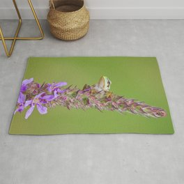 The little green frog Rug