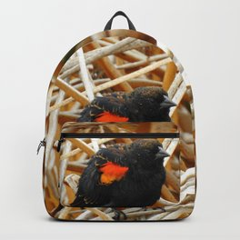Juvenile Male Redwing Blackbird Backpack
