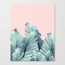 Blush Banana Leaves Dream #5 #tropical #decor #art #society6 Canvas Print