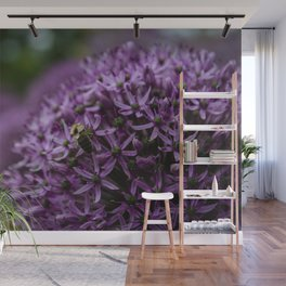 Flower Photography by Jacob Campbell Wall Mural