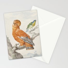 Two Exotic Birds - Vintage Tropical Decor Stationery Cards