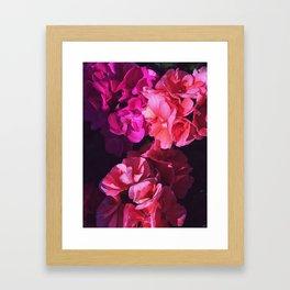 Magenta Haze Framed Art Print
