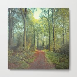 Forest Morning Walk Metal Print