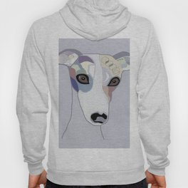 Whippet in Denim Colors Hoody