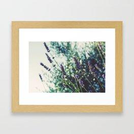 Field of Flowers 10 Framed Art Print