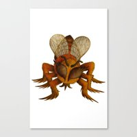 bee Canvas Prints featuring bee by giol's