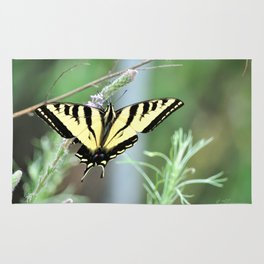 Yellow Tiger Swallowtail Butterfly. © J. Montague. Rug