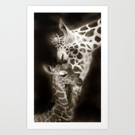 Baby Giraffe and Mother Art Print
