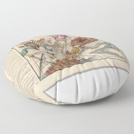 Vintage Celestial Map Floor Pillow